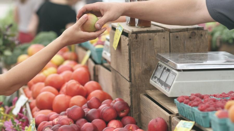 apple-business-fruit-local-95425